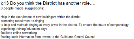q13 Do you think the District has another role